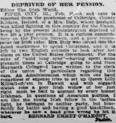 Newspapers across America covered the plight of pension widows abroad. This article appeared in the New York Irish World in 1894.